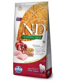N&D Ancestral Dog Adult Giant Maxi chicken, spelt, oat & pomegranate 12 kg kurczak, orkisz, owies i granat
