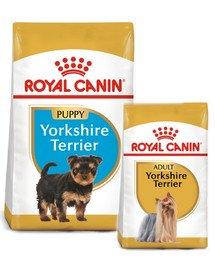 ROYAL CANIN Yorkshire Terrier Junior 7.5 kg + karma następna 0.5 kg