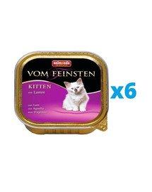 ANIMONDA Vom Feinsten Kitten zestaw z jagnięciną 6 x 100 g