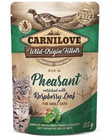 Cat Pouch Pheasant & Raspberry leaves 85g bażant i liście maliny
