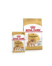 ROYAL CANIN Pomeranian Adult 3 kg + karma mokra Pomeranian Adult 12x85g