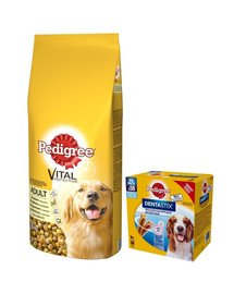 PEDIGREE Adult 15kg (średnie rasy) psów z drobiem i warzywami + DentaStix 112 szt. - 16x180g
