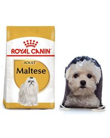 ROYAL CANIN Maltese adult 1.5 kg + plecak worek