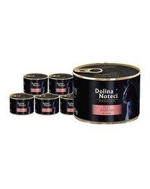 DOLINA NOTECI Premium filet z łososia karma mokra dla kota 12x185 g