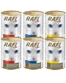 DOLINA NOTECI Rafi Adult mix smaków w sosie 24x415 g