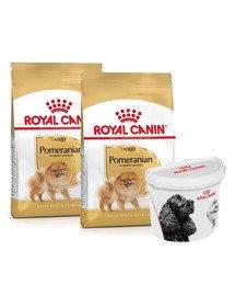 ROYAL CANIN Pomeranian Adult 2x3 kg karma sucha dla psów dorosłych rasy szpic miniaturowy + pojemnik na karmę GRATIS
