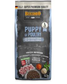 BELCANDO Finest Grain Free Puppy Poultry 12,5 kg sucha karma dla szczeniąt