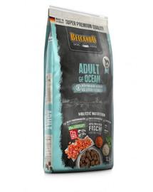Adult Grain Free Ocean M-XL 12.5 kg sucha karma dla psa