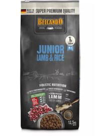 Junior Lamb & Rice M-L 12.5 kg jagnięcina i ryż - sucha karma dla psów od 4 miesiąca życia, rasy średnie i duże