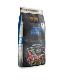 Junior Maxi L-XL 1 kg sucha karma dla psów ras dużych od 4 miesiąca życia