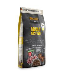 Adult Active 1 kg sucha karma dla psów o podwyższonej aktywności