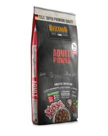 Power M-XL 12.5 kg sucha karma dla bardzo aktywnych psów oraz suk w okresie rozrodczym