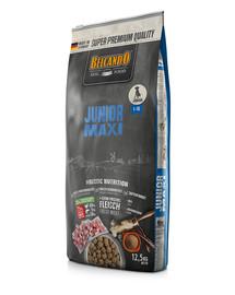 Junior Maxi L-XL 12.5 kg sucha karma dla psów ras dużych od 4 miesiąca życia