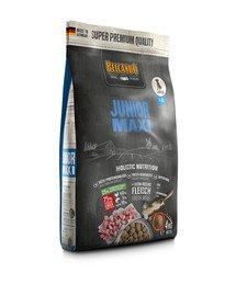 Junior Maxi L-XL 4 kg sucha karma dla psów ras dużych od 4 miesiąca życia