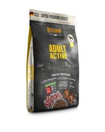 Adult Active 4 kg sucha karma dla psów o podwyższonej aktywności