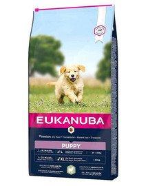 EUKANUBA Puppy Large Breed Lamb & Rice 24 kg (2 x 12 kg)