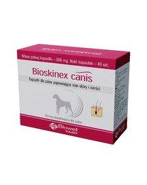 Bioskinex Canis kapsułki poprawiające stan skóry i sierści dla psów 40 kaps.