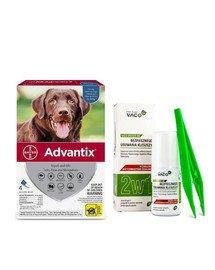 BAYER ADVANTIX Roztwór do nakrapiania dla psów od 25 do 40 kg (4 x 4 ml) + VACO ECO Środek do bezpiecznego usuwania kleszczy (2w1) 1 szt.