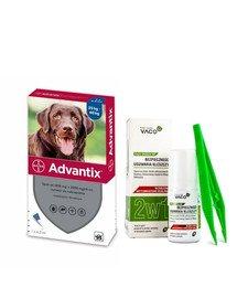 BAYER ADVANTIX Roztwór do nakrapiania dla psów od 25 do 40 kg (1 x 4 ml) + VACO ECO Środek do bezpiecznego usuwania kleszczy (2w1) 1 szt.