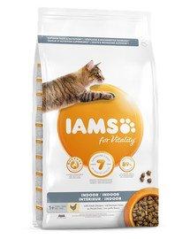 For Vitality Indoor sucha karma z kurczakiem dla dorosłych kotów przebywających w domu 10 kg