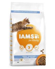 For Vitality Dental sucha karma dla dorosłych kotów 10 kg higiena jamy ustnej