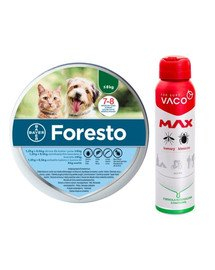 BAYER FORESTO Obroża dla kota i psa przeciw kleszczom i pchłom poniżej 8 kg + VACO VACO Spray MAX na komary, kleszcze, meszki 100 ml