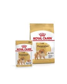 ROYAL CANIN Pomeranian Adult 1.5 kg karma sucha dla psów dorosłych rasy szpic miniaturowy + Pomeranian Adult 12x85g karma mokra