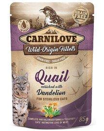 Cat Pouch Quail with Dandelion 85g mokra karma dla kotów sterylizowanych Przepiórka z mniszkiem lekarskim