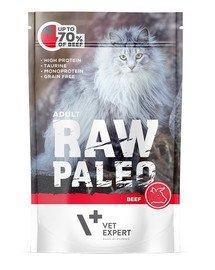 RAW PALEO Adult beef 100 g mokra karma wołowina