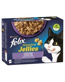 Sensations Jellies Wybór Smaków w galaretce 72x85g mokra karma dla kota