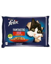 FANTASTIC Wiejskie Smaki w galaretce (królik, jagnięcina) 4x85g mokra karma dla kota