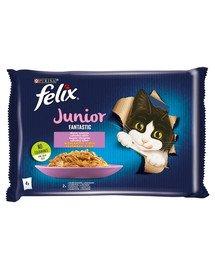 FELIX FANTASTIC Junior Mix smaków w galaretce (kurczak, łosoś) 48x85g mokra karma dla kociąt