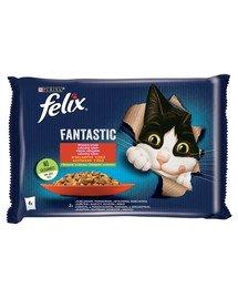 FELIX FANTASTIC Wiejskie Smaki w galaretce (kurczak z pomidorami, wołowina z marchewką) 48x85g mokra karma dla kota