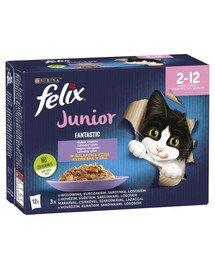 FANTASTIC Junior Mix smaków w galaretce (wołowina, kurczak, sardynka, łosoś) 12x85g mokra karma dla kociąt