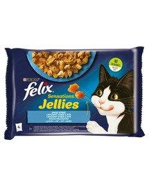 Sensations Jellies Rybne Smaki w galaretce 4x85g mokra karma dla kota