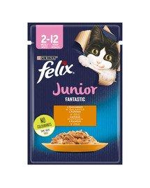 FANTASTIC Junior Kurczak w galaretce 85g mokra karma dla kociąt