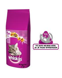 WHISKAS Adult 14kg - sucha karma dla kota z wołowiną i warzywami + naklejka GRATIS