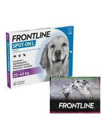 FRONTLINE Spot - on przeciw kleszczom i pchłom dla dużych psów L psy 20-40 kg + ręcznik do łapek GRATIS