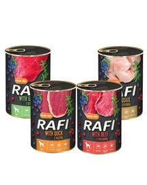 DOLINA NOTECI Rafi Premium Mix smaków 24x400g