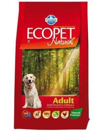 Ecopet natural adult 12 kg