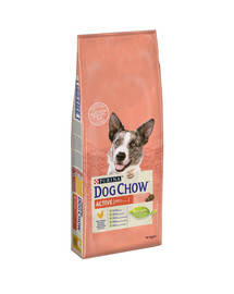 Purina dog chow active kurczak 14 kg