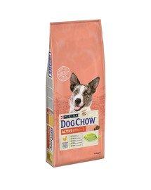 Purina dog chow active kurczak 14 kg