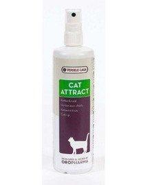 Cat Attract 200 ml - Preparat Przywabiający Koty - Kocimiętka