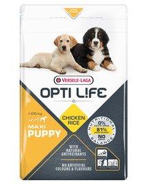 Puppy Maxi - Karma Dla Szczeniąt Ras Dużych I Olbrzymich Drób 12,5 kg