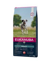 EUKANUBA Dry Base Adult Large Breeds Salmon & Barley 12 kg