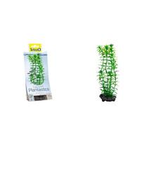 DecoArt Plant M Anacharis 23 cm