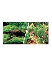 Dwustronne tło do akwarium Japoński krajobraz/rośliny i kamienie 30cm x7.5m