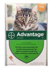 ADVANTAGE Roztwór do nakrapiania dla kotów do 4 kg (4 x 0,4 ml)