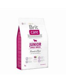 Care Junior Large Breed lamb & rice 3 kg