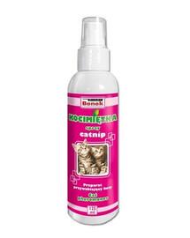 Kocimiętka dla kota 125 ml